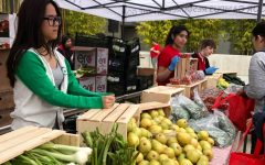 CSUN students giving healthy foods to families that needs them
