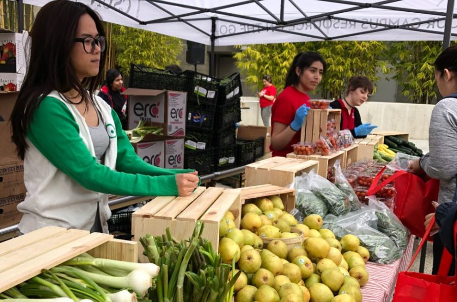 +CSUN+students+giving+healthy+foods+to+families+that+needs+them